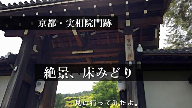 京都・実相院門跡、床みどり。林修のニッポンドリルでおすすめの日本庭園