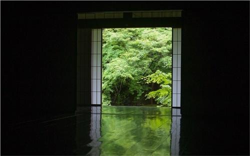 実相院の「床みどり」、緑と黒のコントラストが綺麗(出典:実相院門跡|京都 岩倉)
